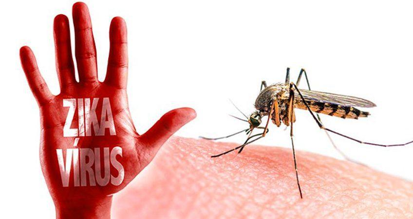 Diệt côn trùng bằng phương pháp sinh học