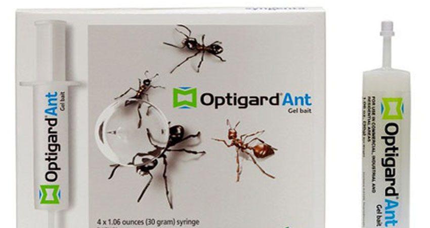 Thuốc diệt kiến Optigard AB 100