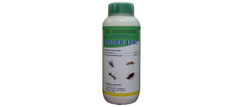 Thuốc diệt muỗi GINGER 10SC