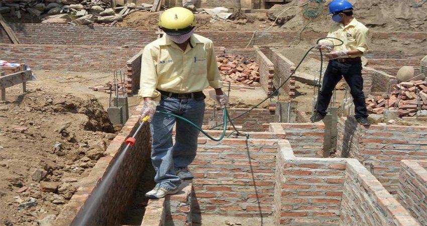 Nên diệt mối trước khi tiến hành xây hoặc sửa nhà