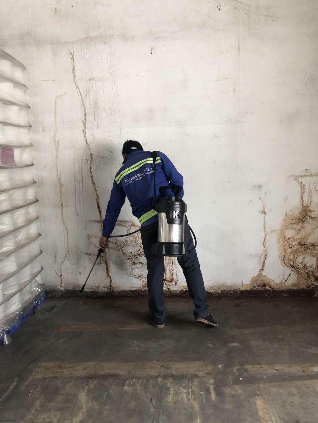 Nhân viên Hạnh Long phun thuốc diệt Muỗi