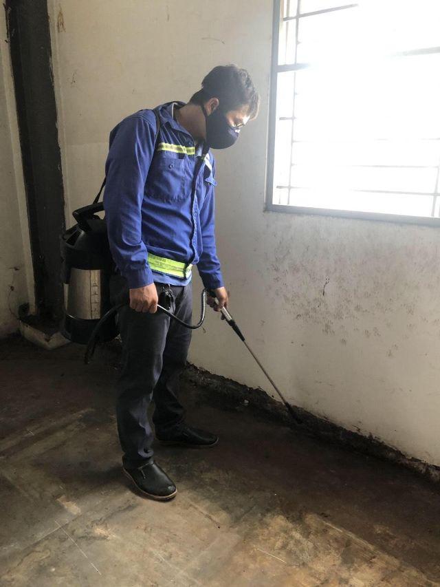 Nhân viên Hạnh Long phun thuốc diệt Muỗi 3