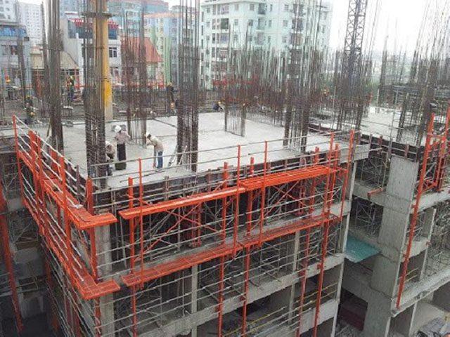 Phòng trừ mối cho công trình xây dựng