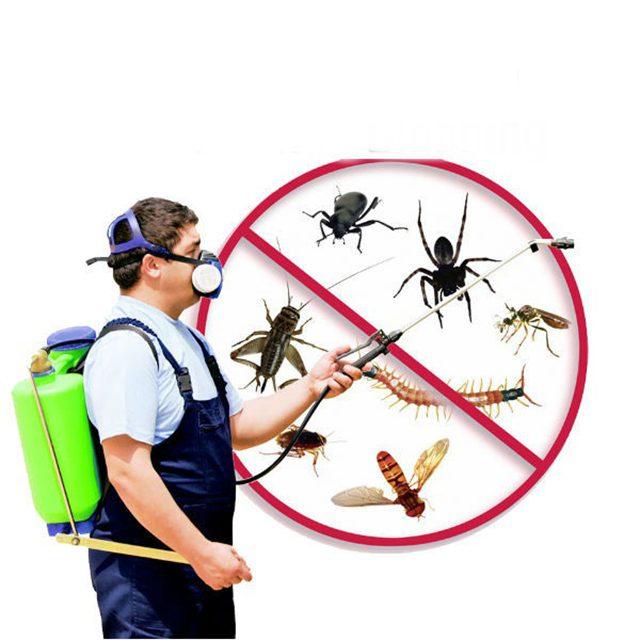Thuốc sử dụng diệt côn trùng