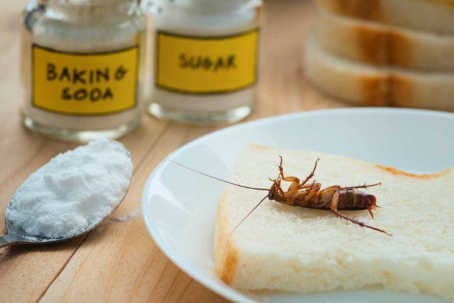 diet-gian-bang-baking-soda